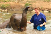 Elephants (57)
